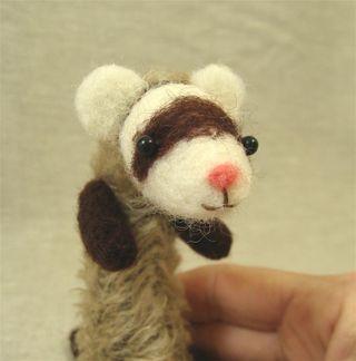 Ferret 2 f (Large)