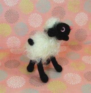 Black lamb c (Large)